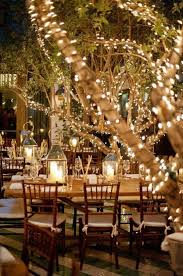 outdoor fairy lighting. fairy light covered trees in outdoor gatherings lighting d