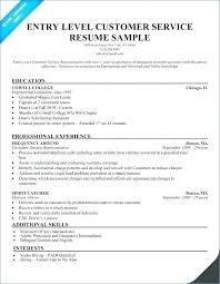 Sample Resume Titles Examples Of Resume Title Joefitnessstore Com
