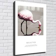 animals flamingo hd canvas prints
