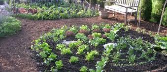 Garden Design Degree Decor Simple Decorating Ideas