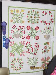 2016 Quilt Show | Forsyth Piecers and Quilters Guild & BEST OF SHOW 2016, BEST HAND APPLIQUED & FIRST PLACE SMALL BED APPLIQUED OR  MIXED Adamdwight.com