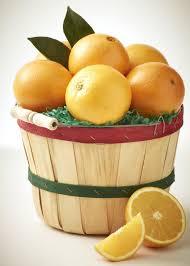 budget friendly florida citrus
