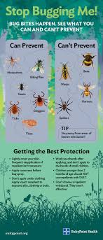 Gnat Identification Chart A Guide To Identifying Bug Bites And How To Prevent Them