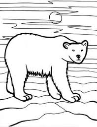 Forest Animal Coloring Page Arctic Animals Little Arctic Fox In Arctic Animals Coloring Page