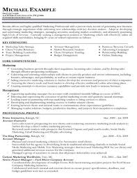 Functional Resume Pdf Functional Resume Template Pdf Threeroses Us