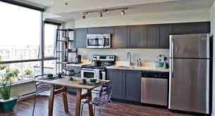 refreshing apartment kitchen with grey cabinet
