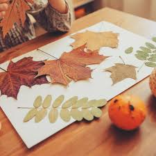 Leaf Color Chart For Sale 37 Best Fall Leaf Craft Ideas Diy Decorating Projects With