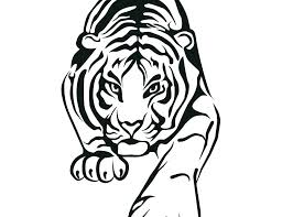 Tiger Coloring Sheet Tiger Coloring Pages Tiger Coloring Pages
