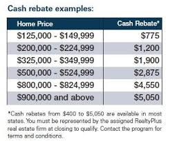 Navy Federal Realty Plus Cash Back Chart