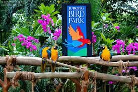 jurong bird park admission ticket 2020