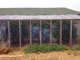 clear greenhouse plastic clear corrugated roofing materials clear plastic greenhouse roofing