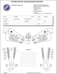 54 Organized Dental Chart Review Form