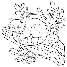 Malvorlagen Kleine Süße Rote Panda Sitzt Und Isst Blätter