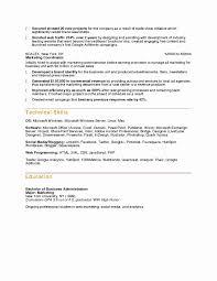 London Business School Resume Template Professional Resume Templates