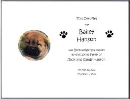 dog birth certificates dog birth certificate birth certificates 5 05 your dog