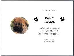 Dog Birth Certificate Birth Certificates 5 05 Your Dog