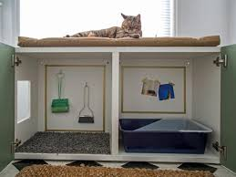 Image Mid Century How To Turn Standard Cabinet Into Kitty Litter Station Hgtvcom How To Conceal Kitty Litter Box Inside Cabinet Hgtv