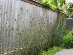 san go corrugated metal backsplash landscape contemporary with galvanized fence cushions4 fencing