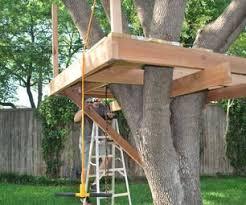 Splendiddiytreehousedesignideawithbridgeandwoodplank Kids Treehouse Design