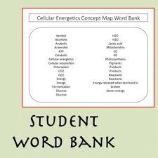 essay business environment study