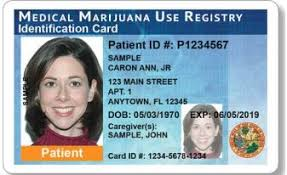 To Cannabis Become In Legal Patient Florida How A Step By Step