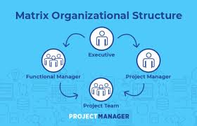 Org Chart Software For Large Companies Matrix Organizational Structure A Quick Guide