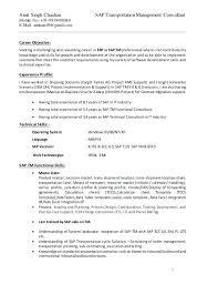 Sap Abap Sample Resumes Resume Objectives Sap Basis Consultant