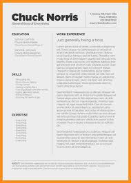Cool Resume Templates For Mac Gorgeous Mac Resum Cool Mac Resume Templates Resume Writing Guide