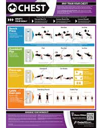 Bench Exercise Chart Chest Workout Fitness Chart Chest