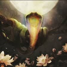 Image result for lotus i hidra