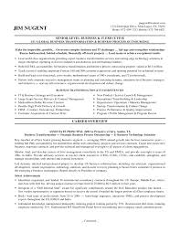 senior it executive resume senior cover letter gallery of resume format for it manager