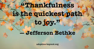 Thankfulness Quotes Amazing 48 Quotes On Thankfulness For Thanksgiving