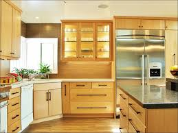 paint for kitchenBest Paint Finish For Kitchen Cabinets  m4yus