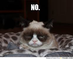 No.... - grumpy cat Meme Generator Captionator via Relatably.com