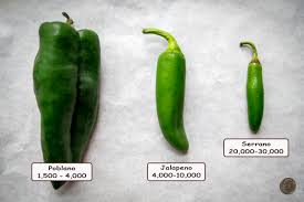 What Is The Scoville Scale Mexican Please