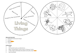 Living Non-Living Worksheets Grade 1 | Following Wheel Created by ...