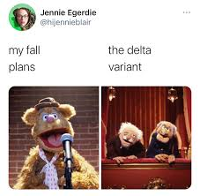 """There Are Just Too Many Hilarious """"Fall Plans Vs. Delta Variant"""" Memes (20+  Memes)"""