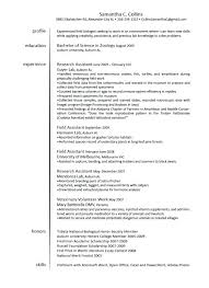 Veterinary Technician Resume Noxdefense Com