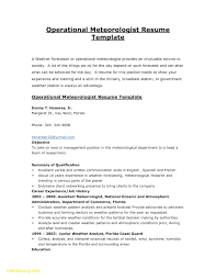 Examples Of First Job Resumes Government Resume Examples How To