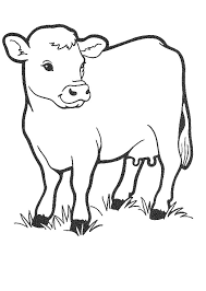 Free Printable Cow Coloring Pages For Kids | nativity animals | Cow ...