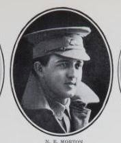 MORTON, Norman Edward. Trooper. No. 1301, 14th Rfts., 11th Light Horse.  Born and educated at Mar… | Maryborough, War, Historical figures
