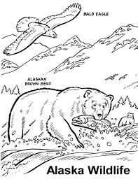 Small Picture Alaskan Animals Coloring Pages Printable Coloring Sheets