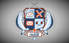 what i learned when i asked the internet if i should make a reddit account autostraddle