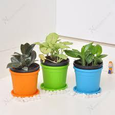 low maintenance office plants. Low Maintenance Table Top / Office Desk Plants. Note: Plants N