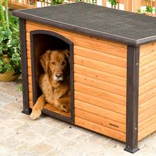 flat roof dog house plans fresh flat roof dog house awesome easy dog house plans inspirational