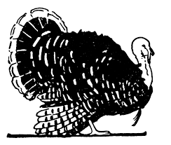 Image result for turkey graphic black and white
