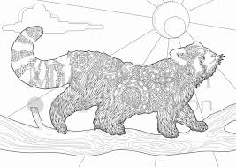 Printable Red Panda coloring page Instant download adult