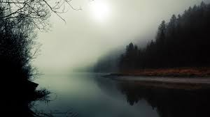 1920x1080 rivers forest foggy fog reflection river haunting fullscreen