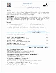 Daycare Director Resumes Elegant Daycare Director Resume Resume Design