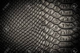 Snake Skin Pattern Unique Black Snake Skin Pattern Texture Background Stock Photo Picture And